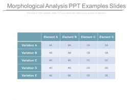 Morphological Analysis Ppt Examples Slides