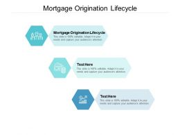 Mortgage Origination Lifecycle Ppt Powerpoint Presentation File Infographics Cpb