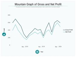 Mountain Graph Of Gross And Net Profit