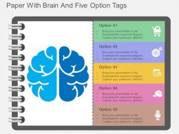 mq Paper With Brain And Five Option Tags Flat Powerpoint Design