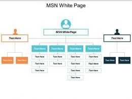 Msn White Page Ppt Powerpoint Presentation Inspiration Visual Aids Cpb