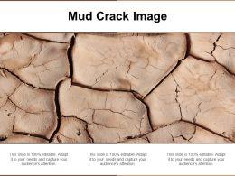 Mud Crack Image