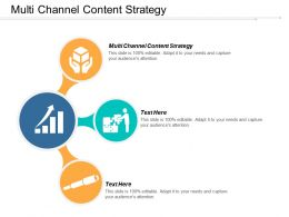Multi Channel Content Strategy Ppt Powerpoint Presentation Icon Layout Cpb