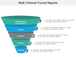Multi Channel Funnel Reports Ppt Powerpoint Presentation Styles Summary Cpb