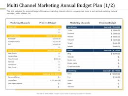 Multi Channel Marketing Annual Budget Plan Budget Ppt Information