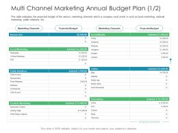 Multi Channel Marketing Annual Budget Plan Business Consumer Marketing Strategies Ppt Guidelines