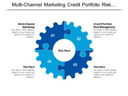 Multi Channel Marketing Credit Portfolio Risk Management Operational Agility Cpb