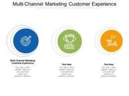 Multi Channel Marketing Customer Experience Ppt Powerpoint Presentation Show Cpb
