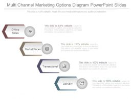 Multi Channel Marketing Options Diagram Powerpoint Slides
