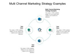 Multi Channel Marketing Strategy Examples Ppt Powerpoint Templates Cpb