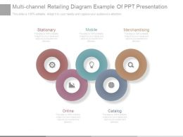 Multi Channel Retailing Diagram Example Of Ppt Presentation