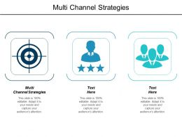Multi Channel Strategies Ppt Powerpoint Presentation Model Deck Cpb