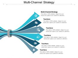 Multi Channel Strategy Ppt Powerpoint Presentation Infographic Template Graphics Template Cpb