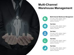 Multi Channel Warehouse Management Ppt Powerpoint Presentation Styles Pictures Cpb