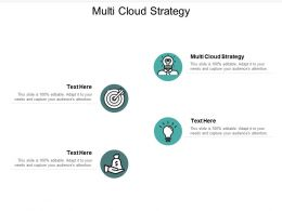 Multi Cloud Strategy Ppt Powerpoint Presentation Model Show Cpb
