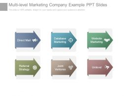 Multi Level Marketing Company Example Ppt Slides