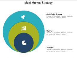 Multi Market Strategy Ppt Powerpoint Presentation Infographic Template Layout Ideas Cpb