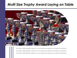 Multi Size Trophy Award Laying On Table