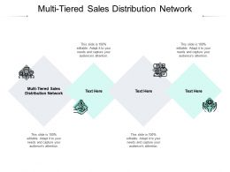 Multi Tiered Sales Distribution Network Ppt Powerpoint Presentation Model Display Cpb