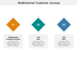 Multichannel Customer Journey Ppt Powerpoint Presentation Icon Layouts Cpb