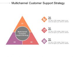 Multichannel Customer Support Strategy Ppt Powerpoint Presentation Summary Icons Cpb