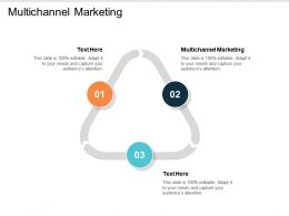 Multichannel Marketing Ppt Powerpoint Presentation Ideas Icon Cpb