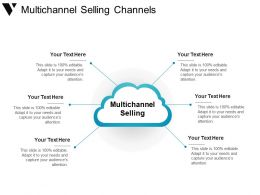 Multichannel Selling Channels Powerpoint Slide Rules