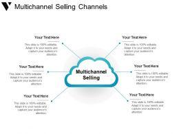 multichannel_selling_channels_powerpoint_slide_rules_Slide01