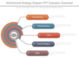 Multichannel Strategy Diagram Ppt Examples Download