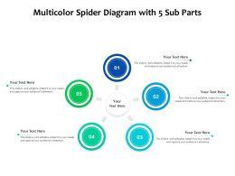 Multicolor Spider Diagram With 5 Sub Parts