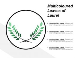 Multicoloured Leaves Of Laurel