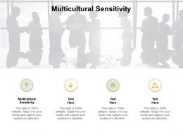 Multicultural Sensitivity Ppt Powerpoint Presentation Styles Infographics Cpb