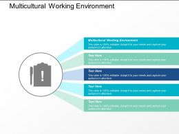 Multicultural Working Environment Ppt Powerpoint Presentation Infographics Example Introduction Cpb