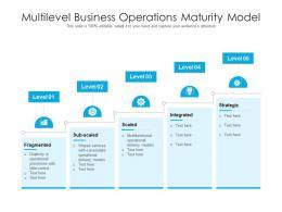 Multilevel Business Operations Maturity Model