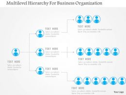 Multilevel Hierarchy For Business Organization Flat Powerpoint Design