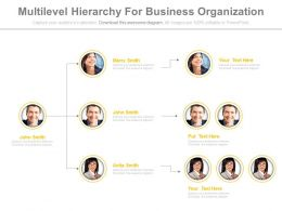 multilevel_hierarchy_for_business_organization_powerpoint_slides_Slide01