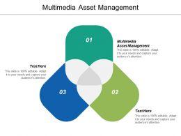 Multimedia Asset Management Ppt Powerpoint Presentation Ideas Microsoft Cpb