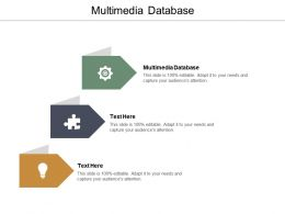 Multimedia Database Ppt Powerpoint Presentation Styles Graphics Design Cpb