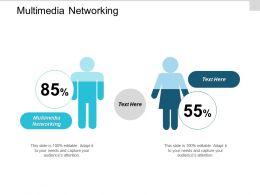Multimedia Networking Ppt Powerpoint Presentation Gallery Slide Portrait Cpb