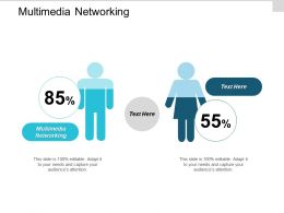 Multimedia Networking Ppt Powerpoint Presentation Infographic Template Visual Aids Cpb