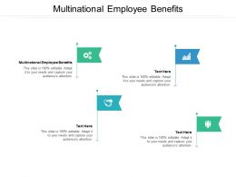 Multinational Employee Benefits Ppt Powerpoint Presentation Styles Icons Cpb
