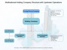 Multinational Holding Company Structure With Upstream Operations