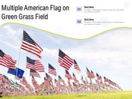Multiple American Flag On Green Grass Field