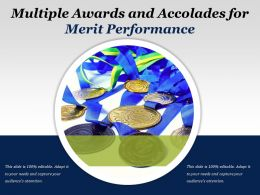 Multiple Awards And Accolades For Merit Performance
