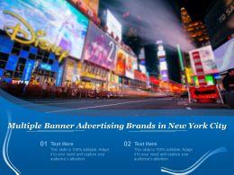 Multiple Banner Advertising Brands In New York City