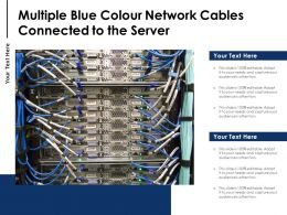 Multiple Blue Colour Network Cables Connected To The Server