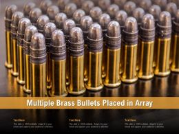 Multiple Brass Bullets Placed In Array