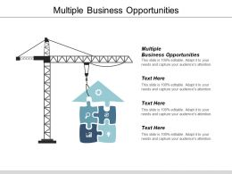 Multiple Business Opportunities Ppt Powerpoint Presentation File Mockup Cpb