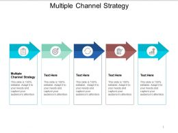 Multiple Channel Strategy Ppt Powerpoint Presentation Outline Mockup Cpb