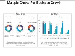 Multiple Charts For Business Growth Presentation Images